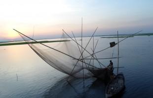 চলনবিল: অতীত ও বর্তমান