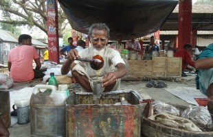 করমজা বরেন্দ্র এলাকার ঔষধি বৃক্ষ