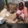 দেশ স্বাধীন হয়েছে এটাই বড় কথা-বোম ফুটি মর্জিনা
