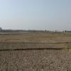 আবারও 'মৌসুমী পতিত' শিকার বরেন্দ্র অঞ্চলের কৃষিজমি