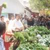 পুষ্টি চাহিদা মেটাতে অচাষকৃত শাক-সবজির বিকল্প নেই