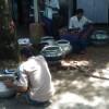 রেণুপোণা আহরণে নীতিমালা না থাকায় সুন্দরবনে জীববৈচিত্র্য হুমকির মুখে