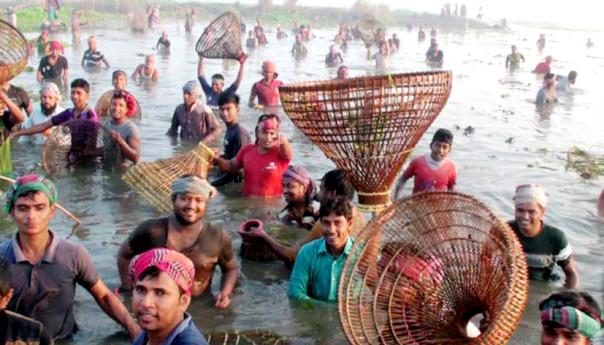 মানিকগঞ্জে ঐতিহ্যবাহী মাছ ধরা উৎসব