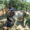 যুবক লিটন চন্দ্র দাস নেত্রকোনার গর্ব