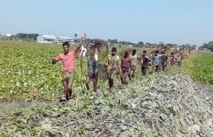 গ্রাম বাংলার মাছ ধরার ঐতিহ্যবাহী উৎসব পলো বাওয়া