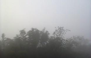 এখন মৃদু কুয়াশা; বাতাসে শীতের হিম হিম স্পর্শ