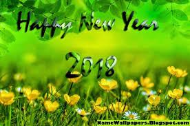 নতুন বছর ২০১৮ (3)