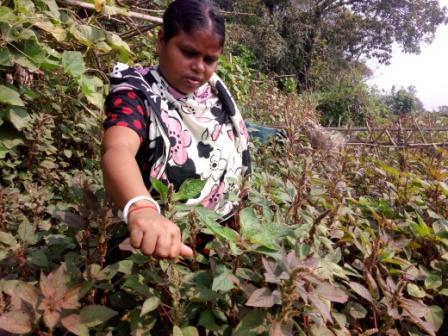 Female Farmers-1
