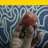 সুস্থ থাকুক প্রাণ, সজীব হোক প্রকৃতি