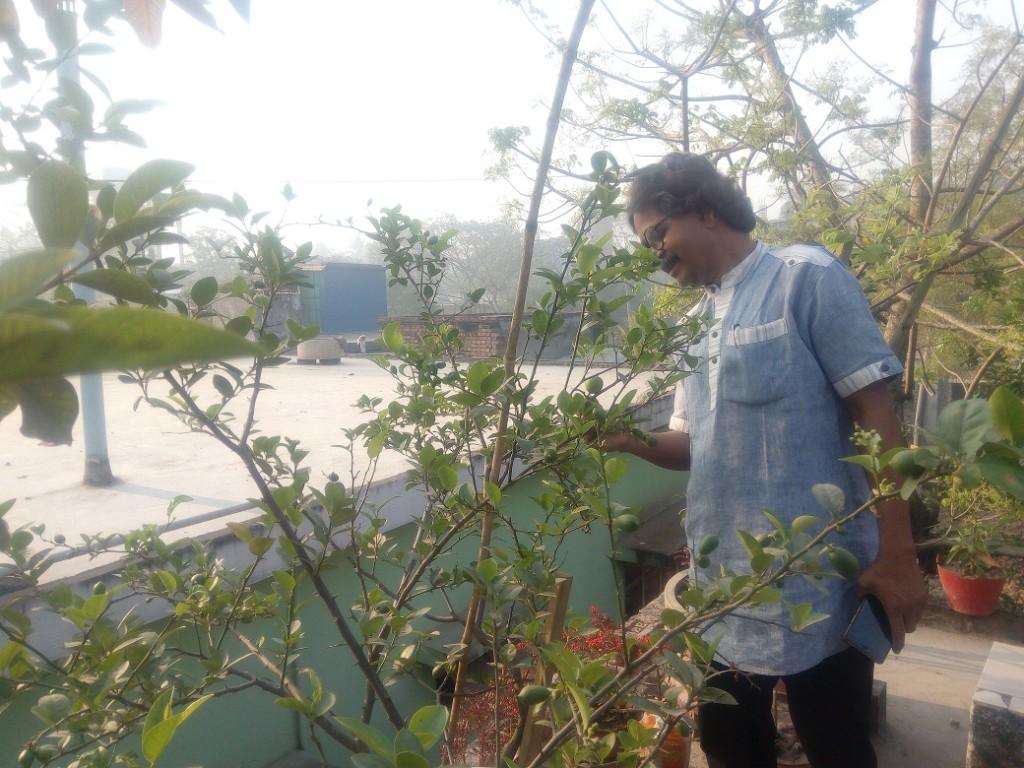 Roof Plantation (4)