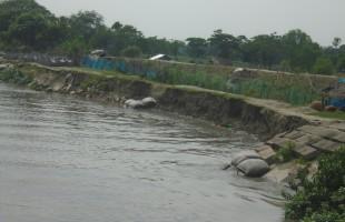 ভাঙছে ইছামতী ভূ-খন্ড হারাচ্ছে বাংলাদেশ