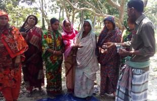 সাতক্ষীরার মাছখোলা ও জেয়ালা গ্রামের কৃষকের মাঝে বীজ বিনিময় অনুষ্ঠিত