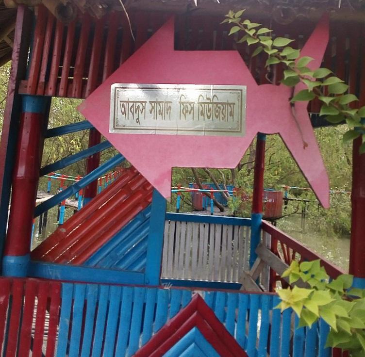 Satkhira abdus Samad fish Museum (2)