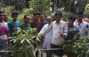 বৃক্ষরোপণে জাতীয় পুরস্কার পাচ্ছেন গাছের পাঠশালার পরিচালক ইয়ারব হোসেন