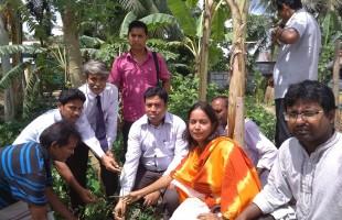 প্রাণবৈচিত্র্য সমৃদ্ধকরণে প্রচুর গাছ রোপণ করুন