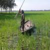 মাছ ধরার যন্ত্র কোঁচ এর ব্যবহার স্মরণ করিয়ে দেয়  প্রাচীন কালের কথা