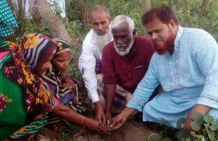 কৃষক সংগঠনের উদ্যোগে তালবীজ রোপণ