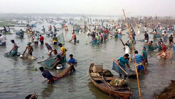 চলনবিলে মাছ ধরার 'বাউত উৎসব'