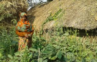 প্রাণবৈচিত্র্য সংরক্ষণে সংগ্রামী নারী ফিরোজা বেগম