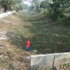 শ্যামনগরে কেমন আছে প্রবহমান আদী যমুনা