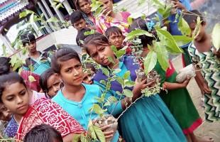 বৃক্ষরোপণে তরুণ প্রজন্মকে উৎসাহিত করতে হবে