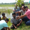 মানিকগঞ্জে এক কিলোমিটার রাস্তায় বৃক্ষরোপণ