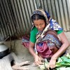 স্বনির্ভর নারী হামিদা আক্তার
