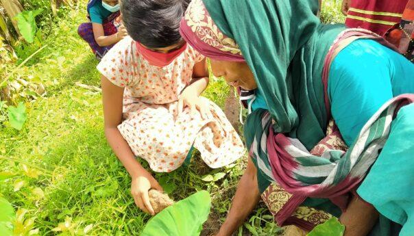 তাল গাছ আমাগো ঠাটা (বজ্রপাত) থেকে রক্ষা করে