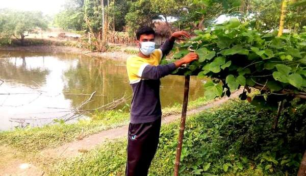 করোনাকালীনে পুকুর সঠিক ব্যবস্থাপনায় লাভবান যুবক ইজদানি রাব্বী
