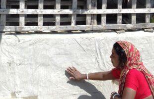 নোনার সাথে যুদ্ধ করে ঘর বাঁচালেন সীমা