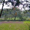 গ্রামের যার যে জিনিস প্রয়োজন হয়, আমার বাড়ি থেইক্যা নিয়া যায়